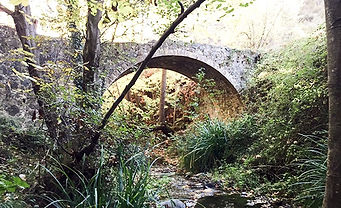 bridge dappled.JPEG