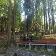 Reinhard Jobst mit Bagger beim Bergen des Baumes
