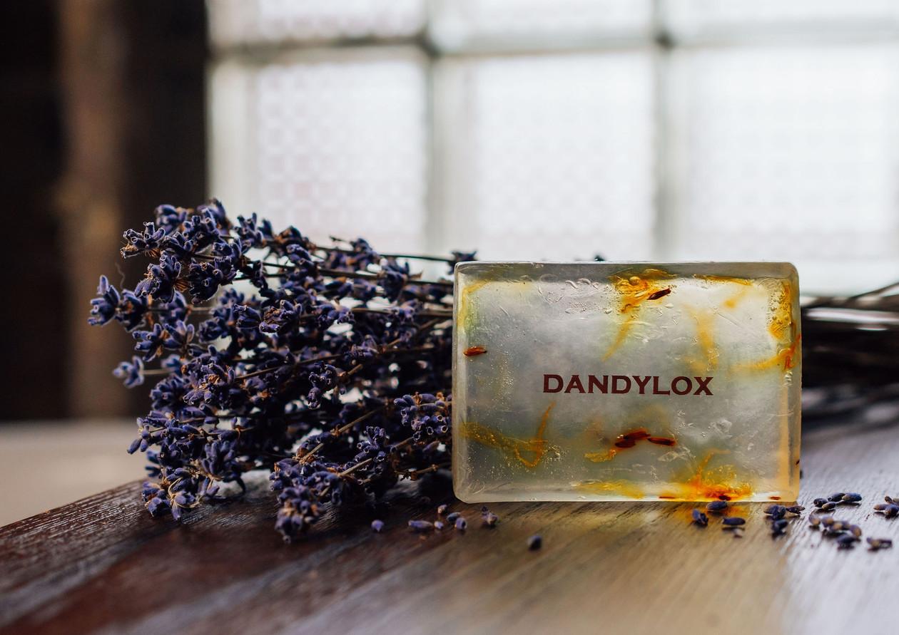 Dandylox_Feb20_byLO_9600-Web.jpg