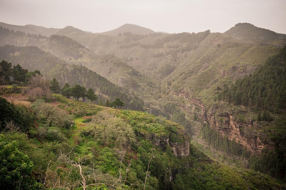 Gran Canaria: Saftige Hänge im Norden der Insel. Wer hier keine Lust auf Sport bekommt, dem ist nicht zu helfen.