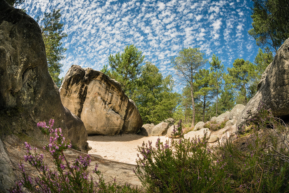 Der Wald in Bleau ist faszinierend: Kiefern versprühen betörenden Sommerduft, Lorbeerbäume spenden Schatten und es tun sich immer wieder kleine Lichtungen auf, wo Sandsteinblöcke mit bester Felsqualität herumliegen, gekrönt durch weich-weißen Sand als perfektes Absprunggelände davor, wie hier in einem meiner Lieblingsgebiete, in 95.2. bastianpaas.de