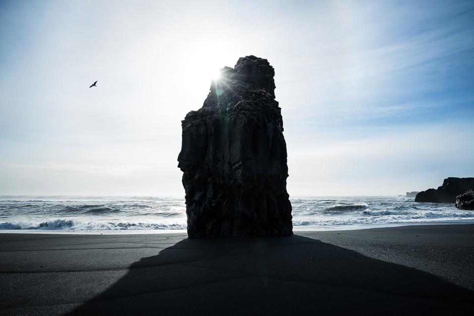 Perfekter Moment, Möwe vor Felsen: Hatte ich schon erwähnt, dass die Perspektiven am Strand bei Vík manigfaltig waren? Ja, es ist immer noch der selbe Strand!
