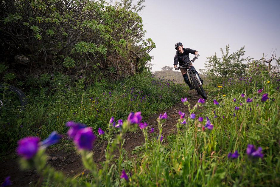Neben verblockten Wegen auf vulkanischen Böden, die herzen von technikliebenden Bikerinnen und Bikern höher schlagen lassen, ist auch flowiges Trailsurfen möglich, insbesondere an den Nordhängen Gran Canarias.