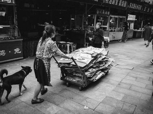 Chonqing_Market_Wagon_and_dog_1000p.jpg