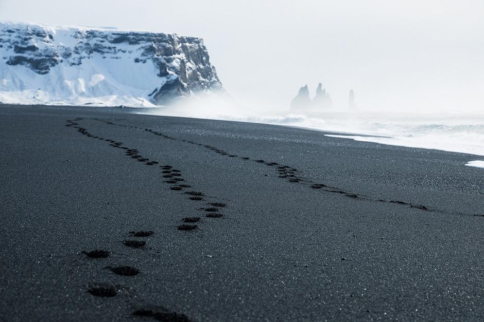 Die ersten und einzigen Fußspuren am kilometerlangen, schwarzen Strand. Island.