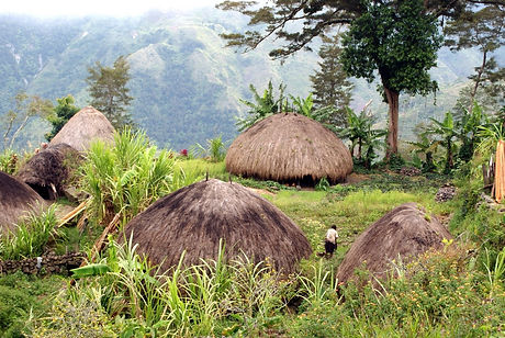 Papua.jpg