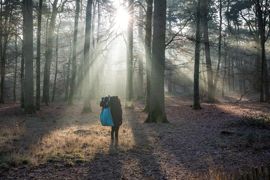 Die Sonne als nicht kontrollierbare Lichtquelle. Bouldern Fontainebelau Sportfotografie bastianpaas.de