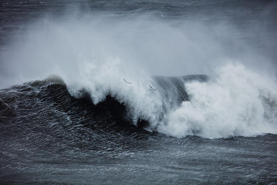 Möwen vor der Gischt: Ganz ehrlich - so heftige Wellenwände aufgepeitscht durch ablandigen Sturm habe ich vorher noch nie gesehen. Fotostory Island.