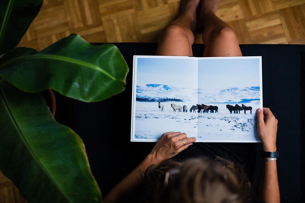 Saal Digital Professional Line Fotobuch - Review Titelbild: Islandpferde.