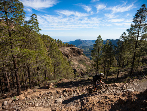 Gran Canaria Single Trails