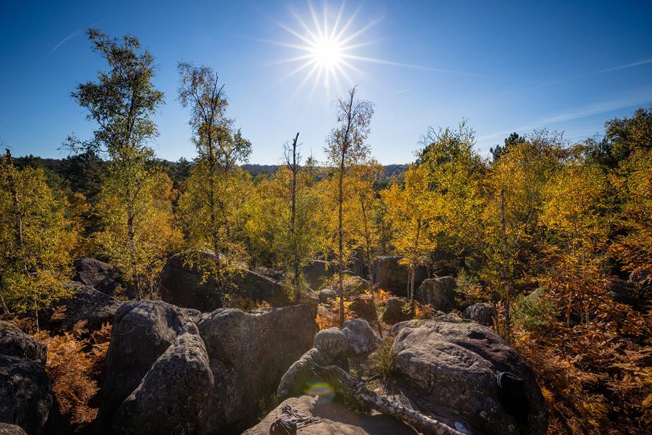 Solche Ausblicke bedürfen nicht vieler Worte. Die Herbstsonne Anfang November küsst goldgelbe Birken, Esskastanien und die feinen Sandsteinblöcke in Aprémont.
