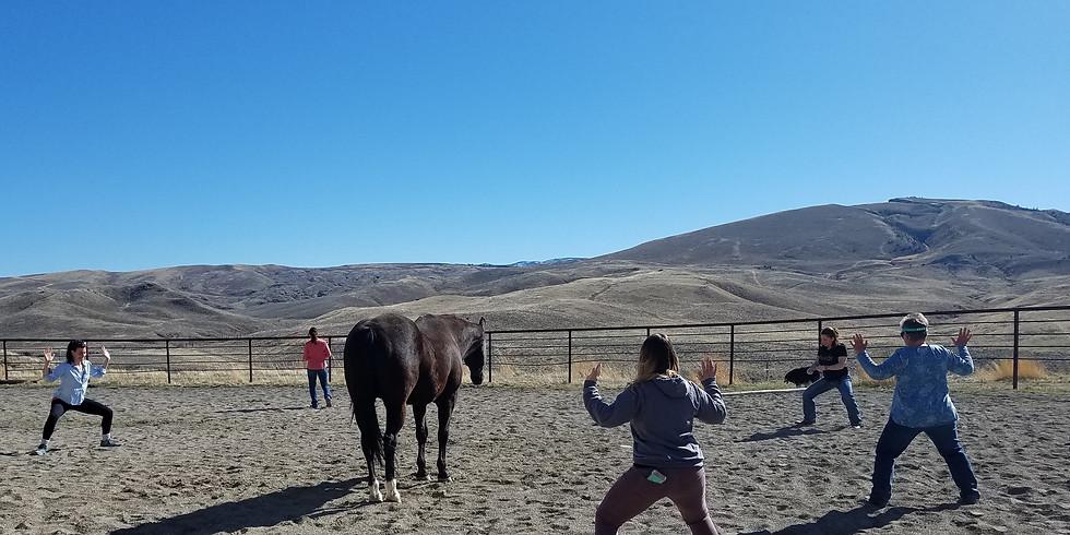 NamaNeigh-Horse Led Yoga