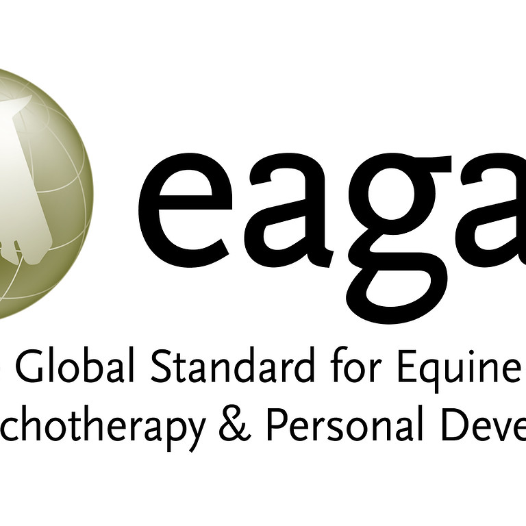 Fundamentals of EAGALA Model Training-Cody, Wyoming