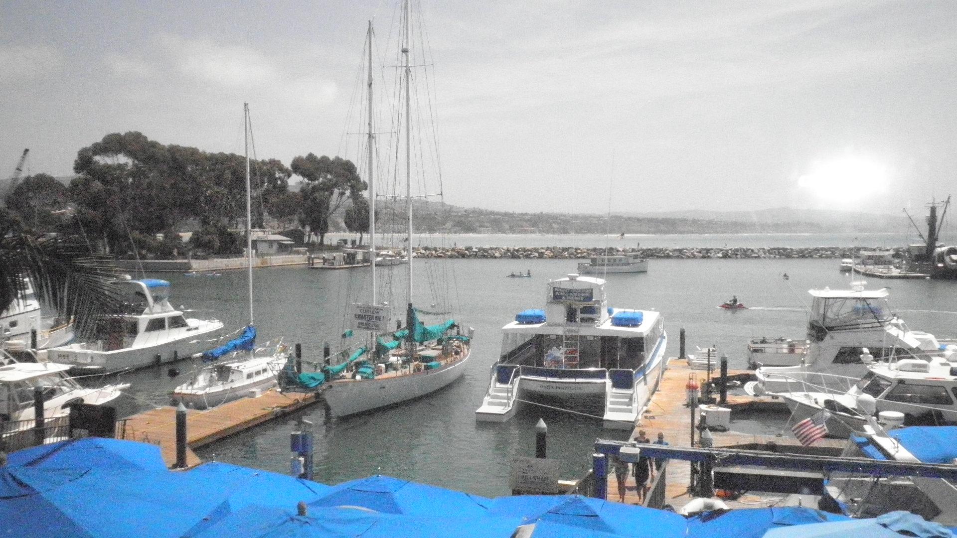 Wind N Sea Resturant