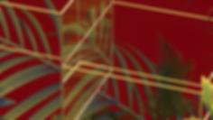 JUNGLE_GROW_LEMONS_v001_JUNGLE_FRUIT3_20