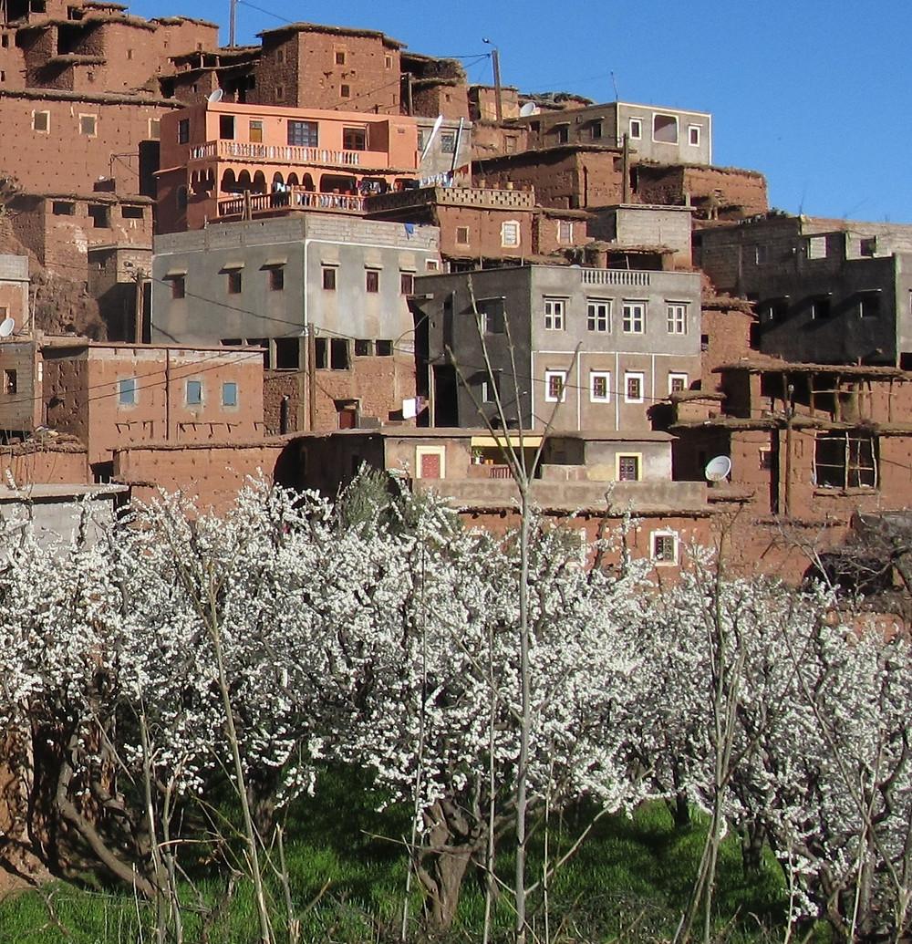 Berberská vesnice s rozkvetlými stromy.