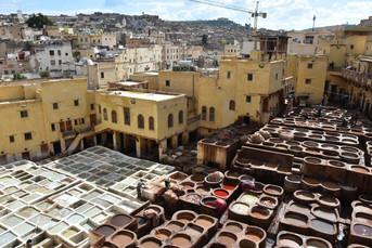 Tradiční koželužny ve Fezu