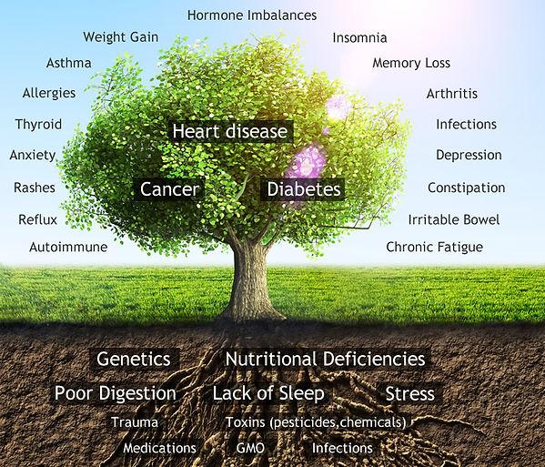 functional-medicine-tree-v3.jpg