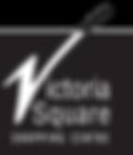 V-Square-logo-sm-masked.png