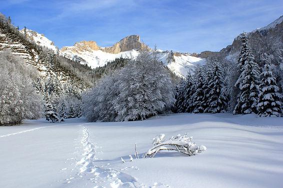 traces, neige et rocher rond.JPG