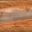 Thumbnail: Sandy Clay (Pond Liner Clay)