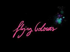 FLY_COLOURS.jpg