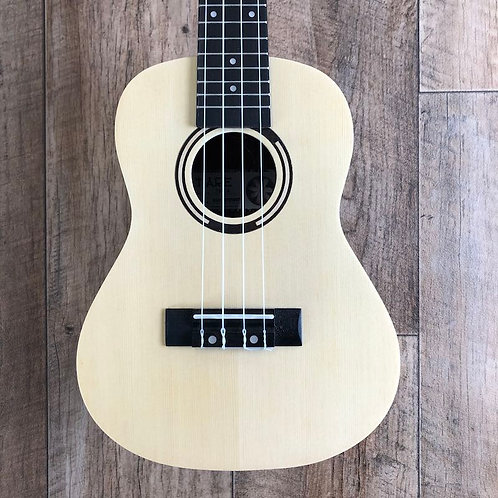 Tanglewood TWT9