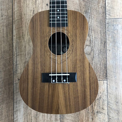 Tanglewood TWT 3