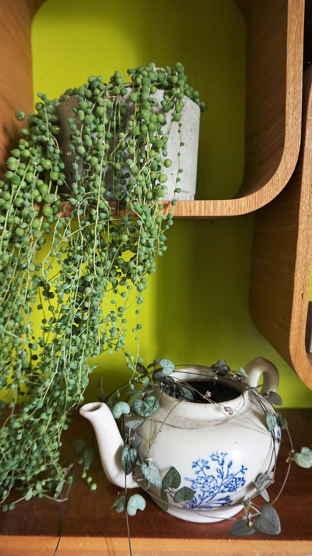 petit pot pour plante en béton