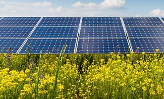 Australian Solar Maintenance Ground Maintenance Services