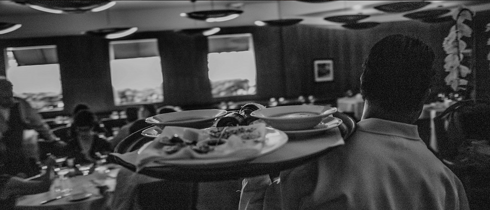 oysters on a plate and dining room