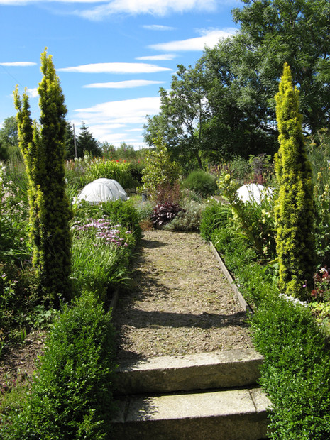 Tillydaff garden