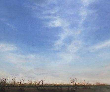 Saffron Hiding in Halcyon's Sky
