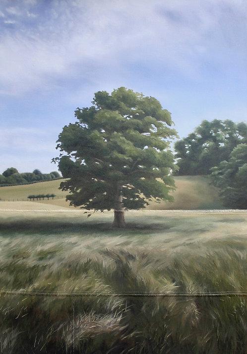 The Wonder Tree - Print (A3)