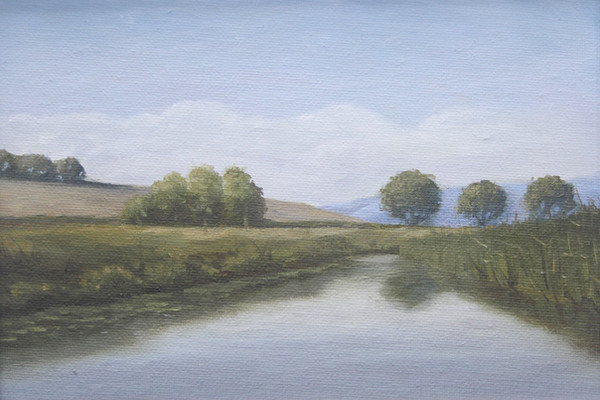River Rother Study