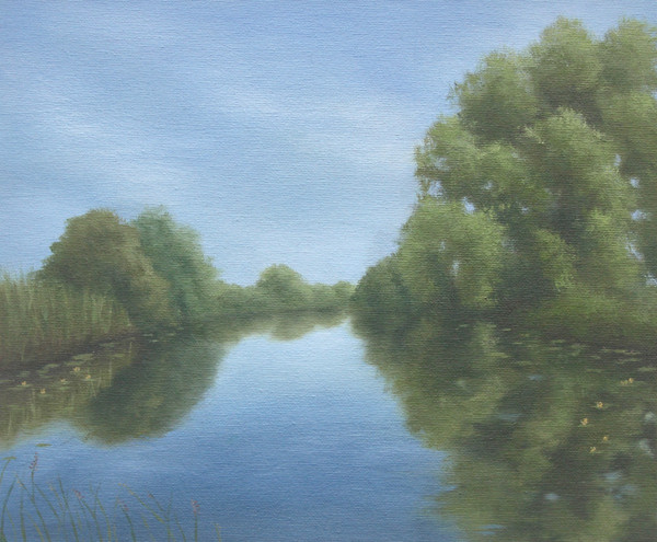 Floating by the Willows