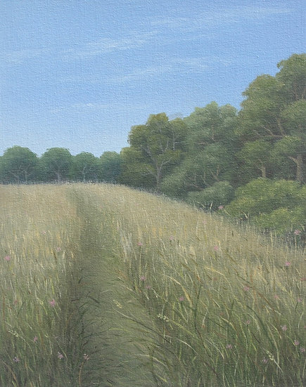 Dry Summer Meadows