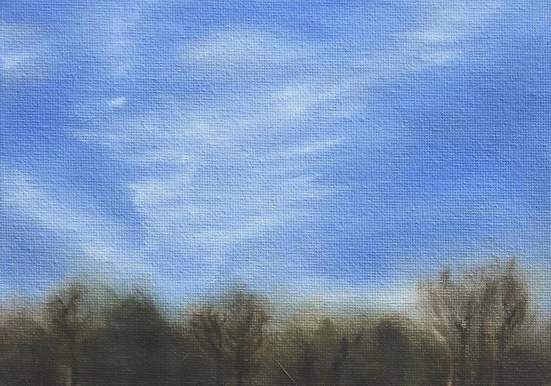 Winter Cloud Study
