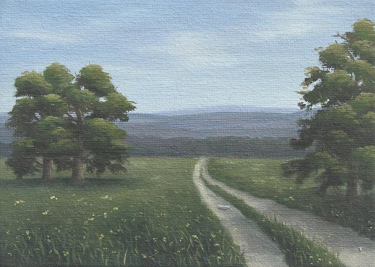 The Horizon Trail