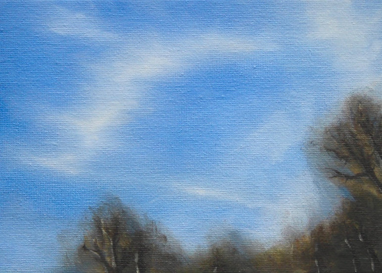 Winter Cloud Study 2