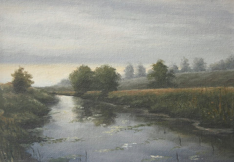 River Rother Study 2