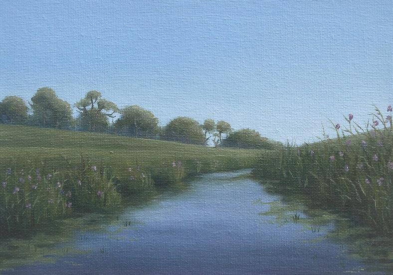 Sunshine on Quiet Waters