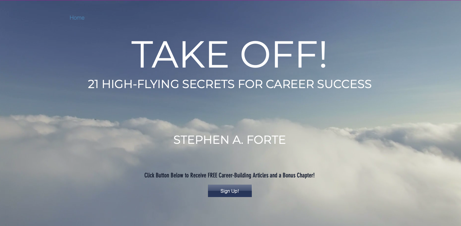 High Flying Success Secrets