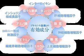 図1.webp