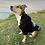Thumbnail: Dog Hoodie ** Limited edition **