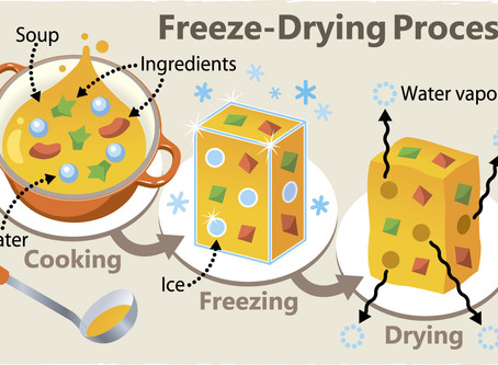 Freeze-Drying Food