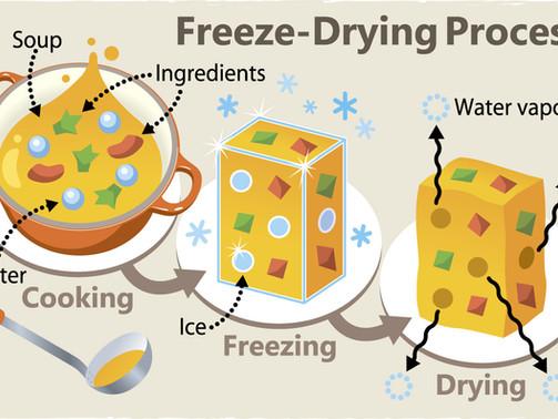 Freeze-Drying Food