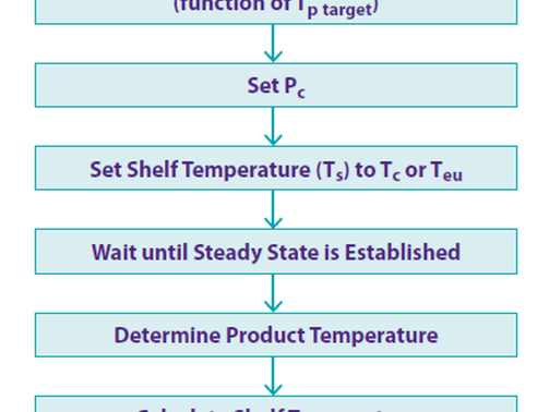 Smart TDLAS-based Freeze Dryer Technology: Application to Highly Concentrated Amorphous Systems