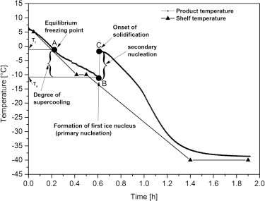 Freezing and Annealing Phenomena in Lyophilization