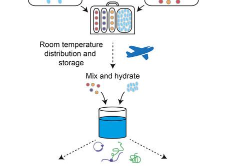 Lyophilization: The Key to Portable Biomolecular Manufacturing